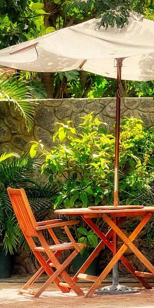 zomerplanten